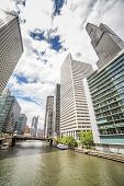 image of illinois  - Skyscrapers by the Canal Chicago Illinois USA - JPG