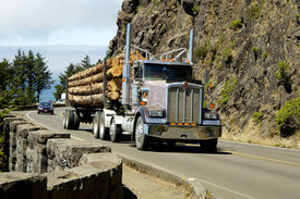 picture of logging truck  - A load of logs being transported to the sawmill - JPG
