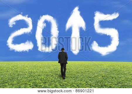 Businessman Walking For White 2015 Cloud And Blue Sky Grass