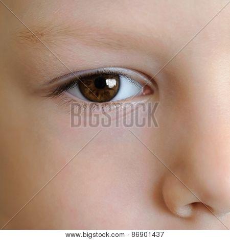 The Boy's Eyes