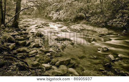 Blue Ridge Mountain Stream