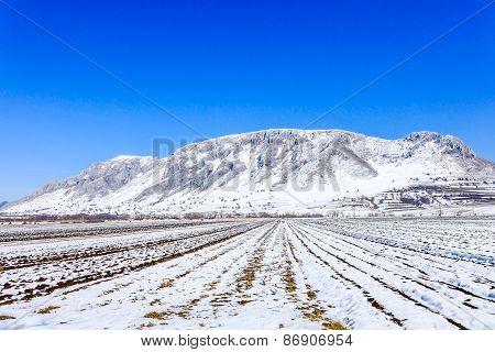 Piatra Secuiului, Szekelyko mountain