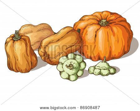 Varieties Of Pumpkin