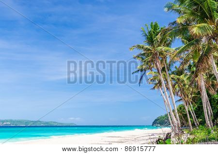 Tropical White Beach View And Palm Trees With Turquoise Sea