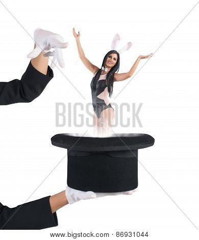 Magic woman bunny