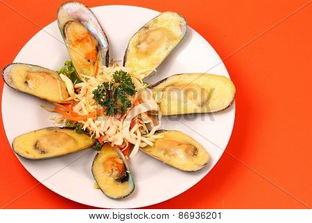 New Zealand Mussels