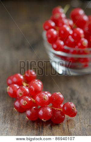 Red currants isolated on old wood