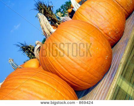 Diagonal Pumpkins