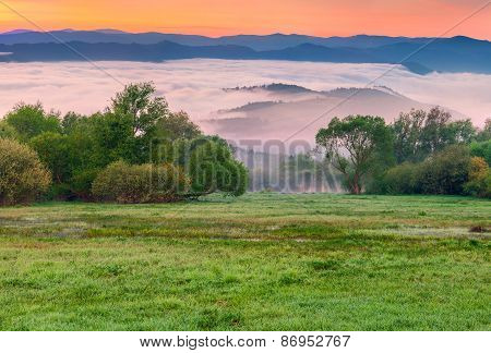 Colorful Spring Morning In The Foggy Mountains