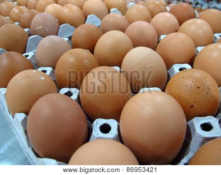 dozens of fresh eggs for cooking