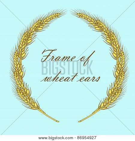 frame of golden ripe wheat ears vector illustration