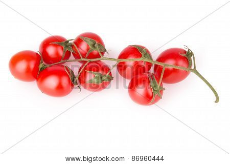 Cherry Tomatoes Top View