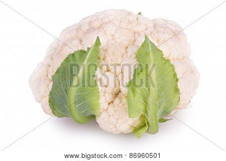 Fresh Cauliflower On A White Background