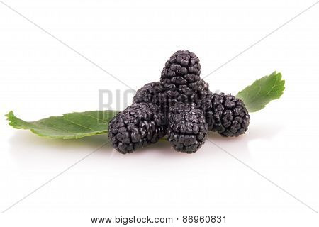 Mulberry Fruit With Leaves