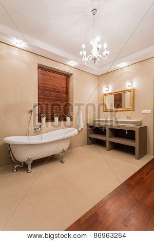 Elegant Bathtub