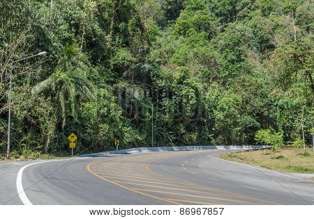 Asphalt Curve Road With Tree