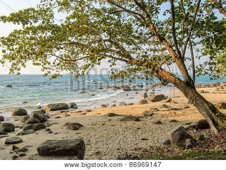 Rock Beach With Wooden Swing