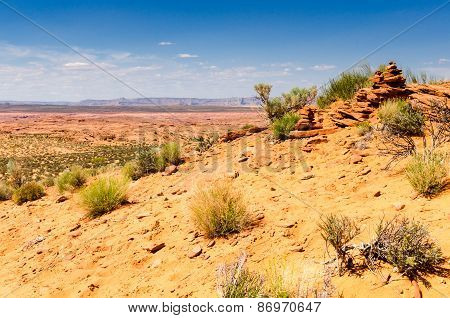 Desert landscape of sandstone and scrub