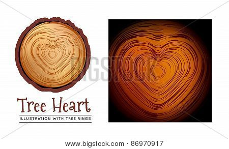 Wooden cross section of the heart shape