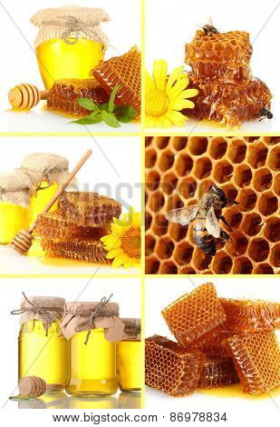 Collage of sweet honey and honeycombs