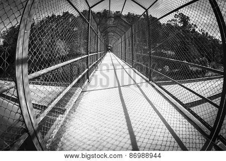 interior of a walkway bridge with protective metal mesh