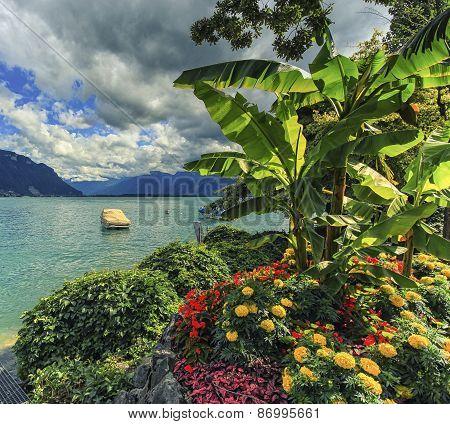 Geneva or Leman lake, Switzerland