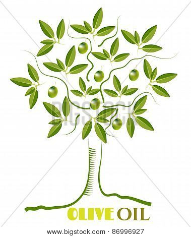 One green, isolated, olive tree with twigs with leaves and olives, text Olive Oil, white background