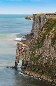 pic of cliffs  - Bempton Cliffs Yorkshire England rugged coastline of chalk cliffs - JPG