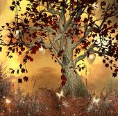 picture of faerie  - Enchanted nature series  - JPG
