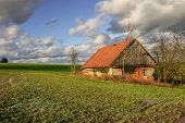 foto of abandoned house  - abandoned old house standing in the middle of meadows - JPG