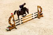 picture of horse-riders  - Equitation - JPG