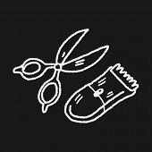 stock photo of grooming  - Doodle Pet Grooming - JPG
