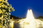 picture of night-blooming  - The famous Europaplatz fountain in Aachen Germany at night with focus on a bush of beautiful flowers in the foreground - JPG