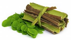 picture of malunggay  - Moringa leaves and bark over white background - JPG