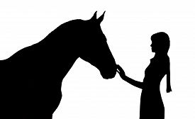 pic of horse girl  - Silhouette of the girl and horse - JPG