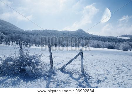 Fence Covered With Ice