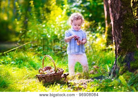 Little Girl Picking Mushrooms In Autumn Park