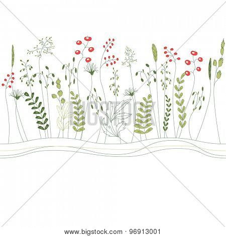 Seamless pattern brush with herbs and wild flowers isolated on white. Endless horizontal texture for your design.