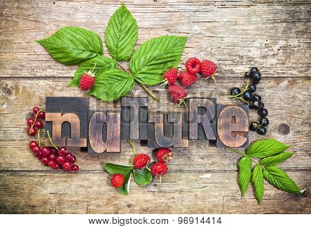 nature, word set with vintage printing blocks surrounded by assorted berry fruits