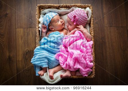 Newborn twins lying down inside the wicker basket