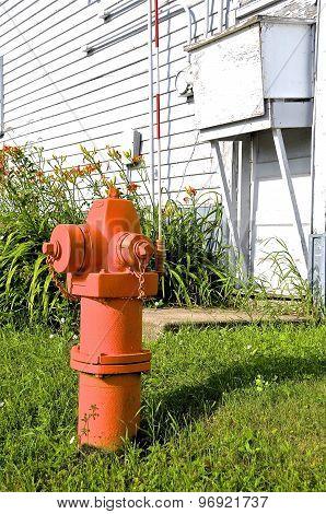 Orange fire hydrant