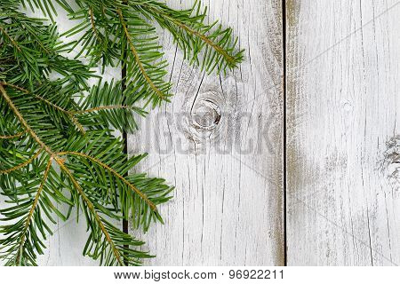 Grand Fir Branch On Rustic White Wooden Boards