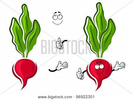 Cartoon pink radish vegetable character