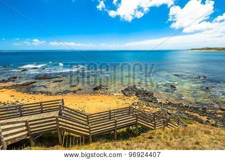 Flynns Beach Phillip Island