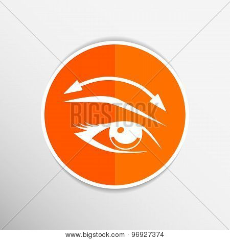 Eyelashes eyebrows eyelash eye vector icon makeup isolated