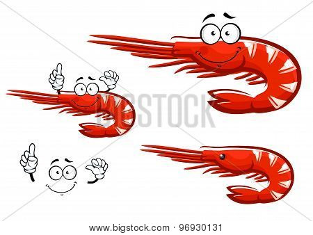 Isolated red shrimp cartoon character