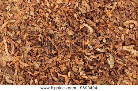 Cut Dried Leaves Of Tobacco
