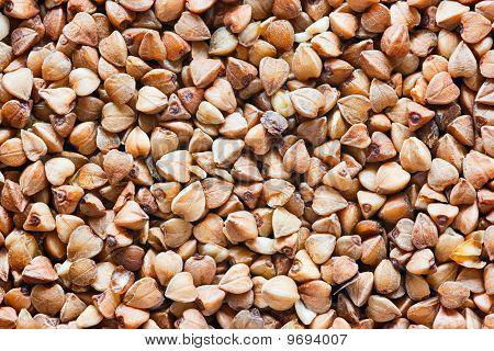 Buckwheat beans texture
