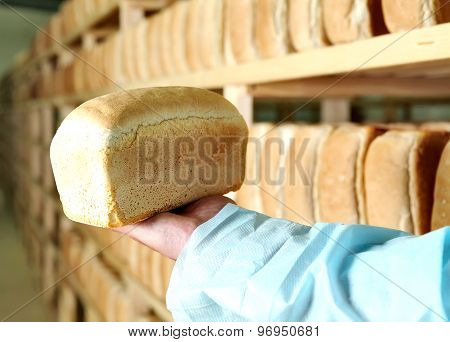 Bread in the man hands Bakery Stocks bread Manufacture of rusks.