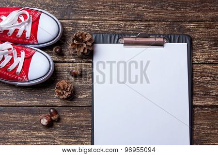 Pine Cones And Business Tablet